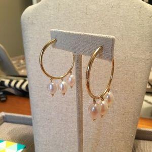 NWB Stella & Dot Natriella Pearl Hoop Earrings